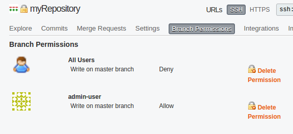 Branch permissions example